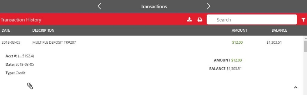 Transaction Detail Information